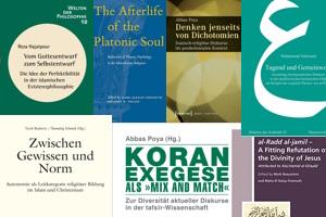 Titelbilder der Publikationen der DIRS-ProfessorInnen